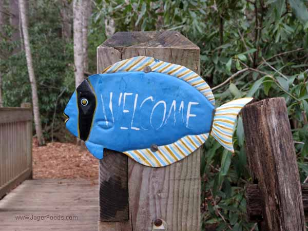 Welcome _Montreat, NC