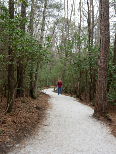 Asheville Nc Best Hiking Trails
